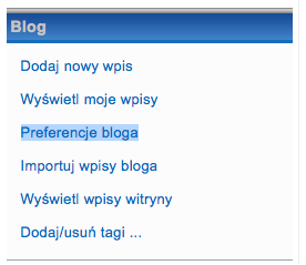 Preferencje bloga