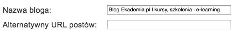 Alternatywna nazwa i URL postów bloga